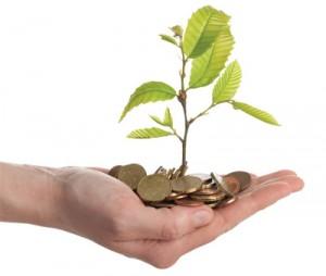 initial investment - copia