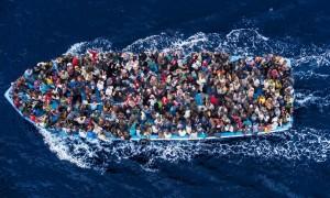 Migration Picture 1