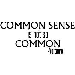 common_sense_not_so_common_onesie