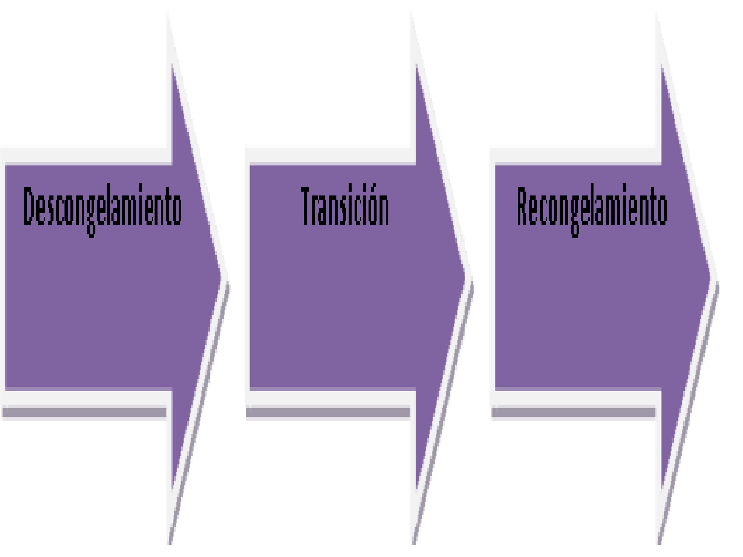 Importancia Y Manejo De Los Cambio En Las Organizaciones