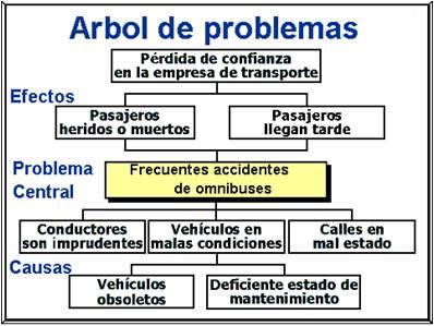 11_Arbol.jpg